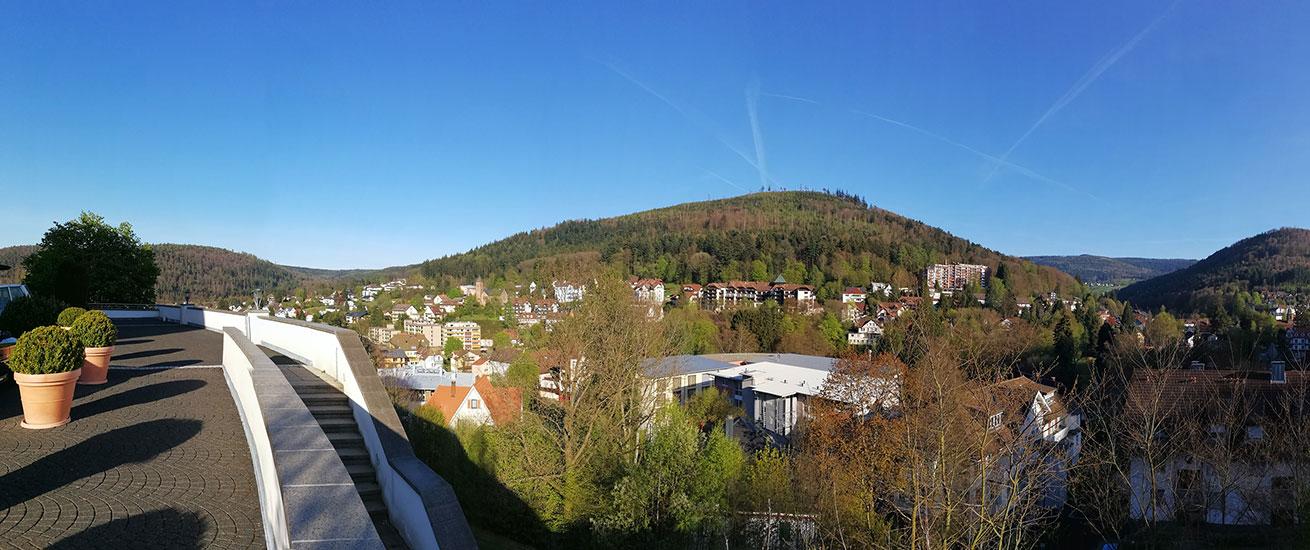 Hotel Schwarzwald Panorama: Ausblick
