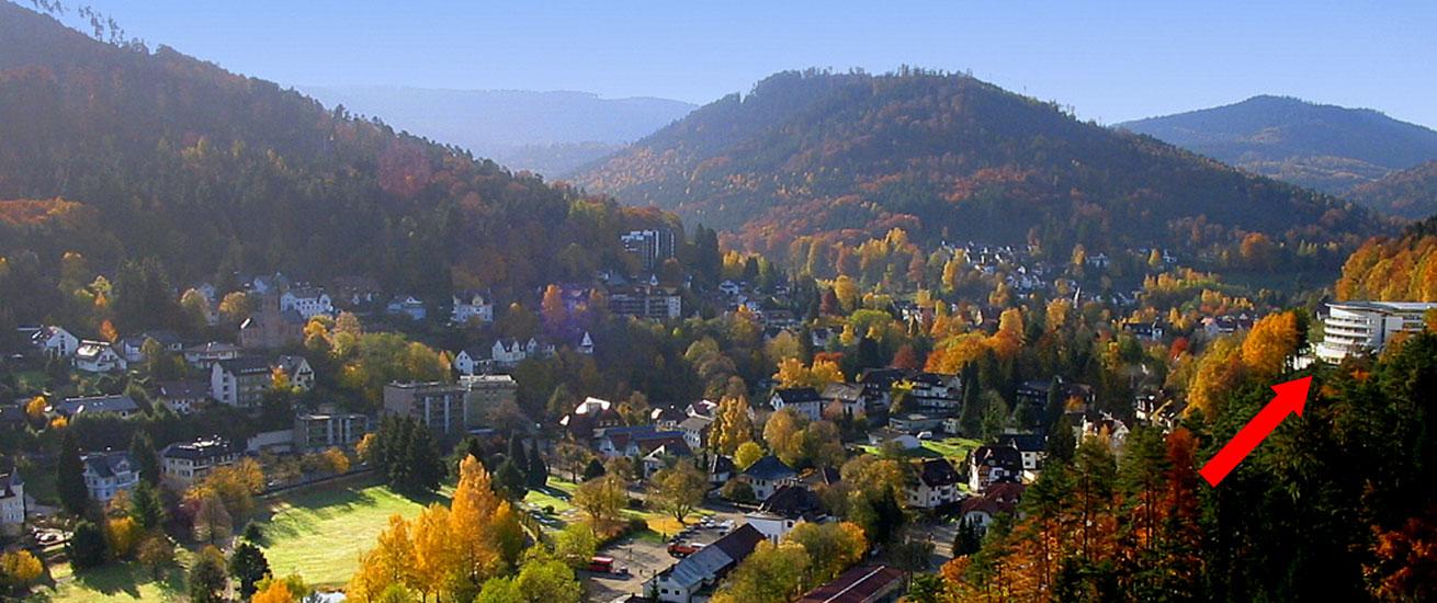 Hotel Schwarzwald Panorama: Lage (Foto)